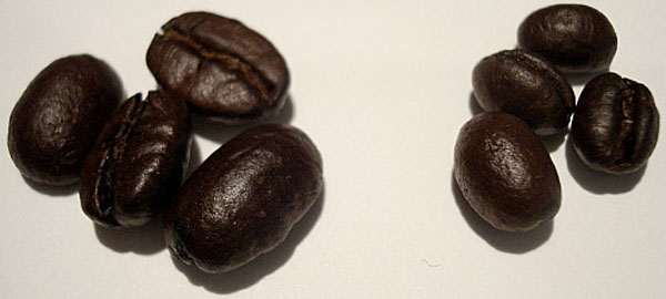 Peaberry Beans